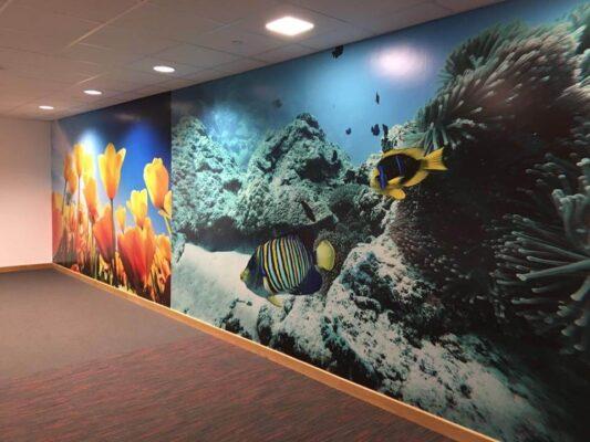 under the sea graphics